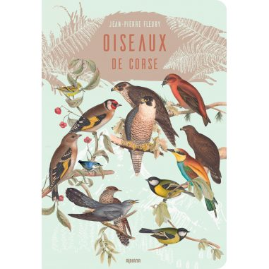 Oiseaux de Corse